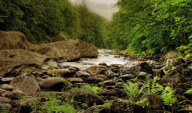 nature, речка, landscapes, камни, деревья, full, пейзажи, amazing,