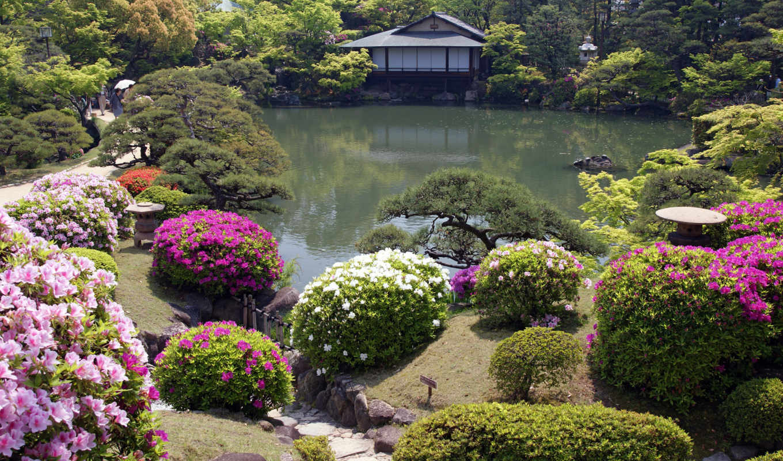 japanese, garden,