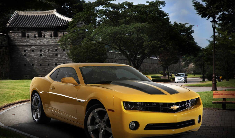 chevrolet, gm, camaro, автомобили, деревья, daewoo, авто, korea, машины, brand, will,