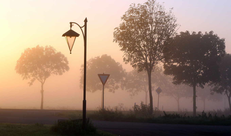 туман, дорога, фонарь, знаки, улица, картинка, парк, деревья,