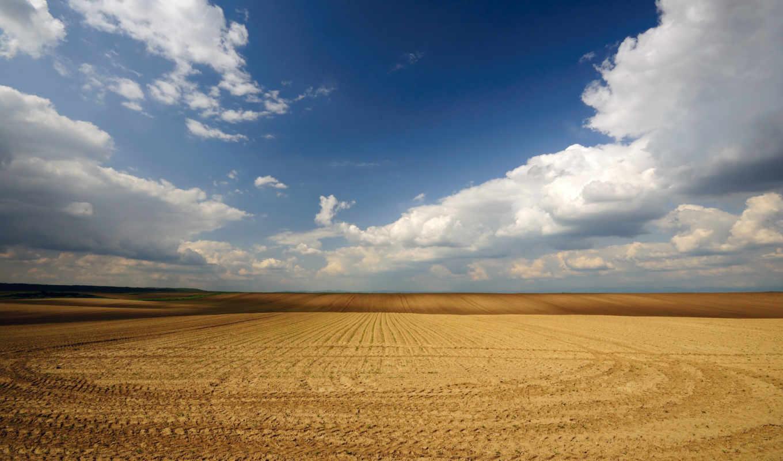 поле, широкоформатные, arena,