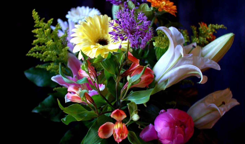 цветы, букеты, букет,