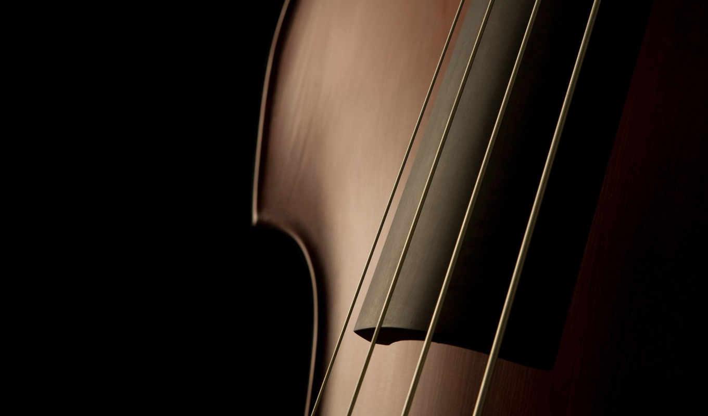 виолончель, more, скрипка, violonchelo, ноябрь,
