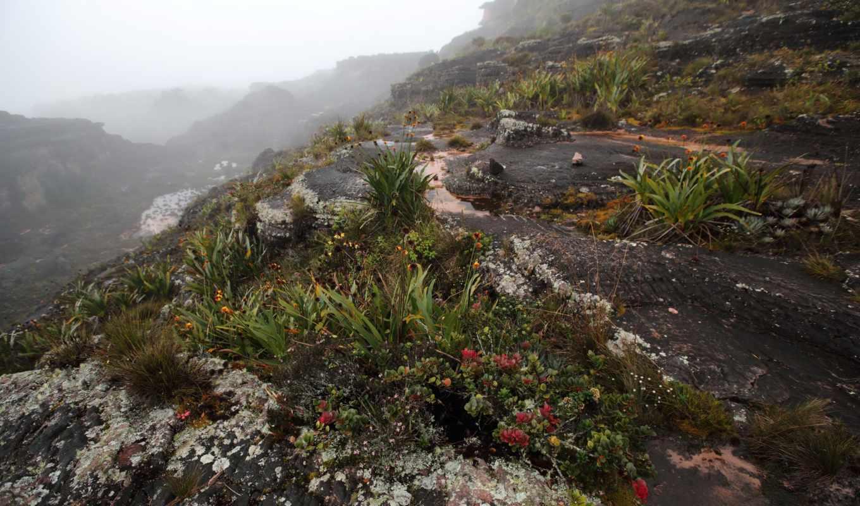 картинка, природа, туман, горы, venezuela,