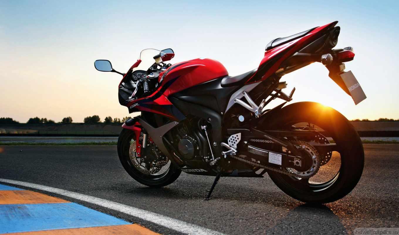 honda, мотоцикл, мотоциклы, cbr, favourite,