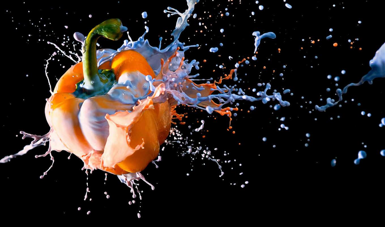 перец, paint, free, ecran, private, cats, креатив, orange, colorful,