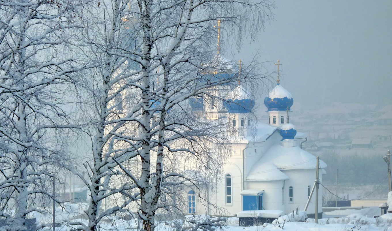 снег, зима, зимой, деревья,