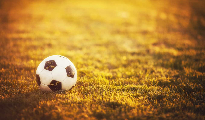 мяч, спорт, трава, футбольный, футбол, трава,