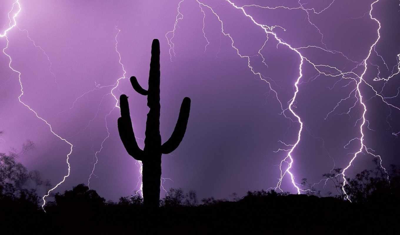 sky, молнии, nature, lightning, purple, lighting, явления, природные, радуга, пустыне, cactus, bilder,