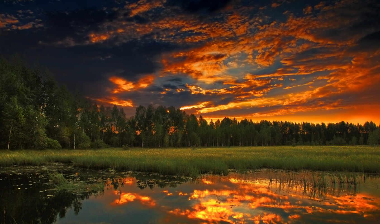 закат, лес, вечер, лето, природа, за, пейзажи, вода, деревья, behind, outdoors, landscapes, лесом,