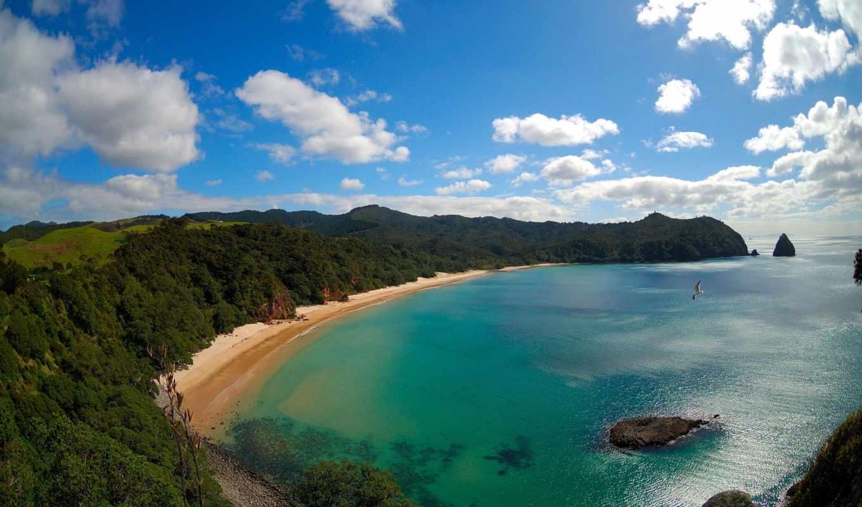 пляж, new, zealand, whangapoua, stars, beaches, ан, resort,
