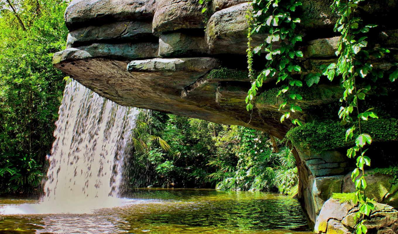 водопад, картинку, совершенно, лесу, категория, природа, лес,