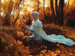 роза, осень, magicastrolog
