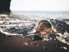 пляж, гравий, песок
