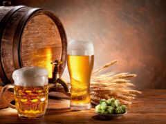 brewer, пиво, карпаты