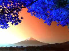 япония, фудзи, mount
