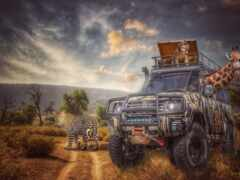 сафари, jeep, саванна