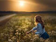 цветы, девушка, поле