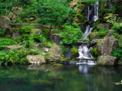 водопад, камни, garden Фон № 94256 разрешение 2560x1600