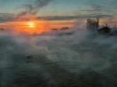 туман, река, утро
