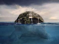 черепаха, earth, спина