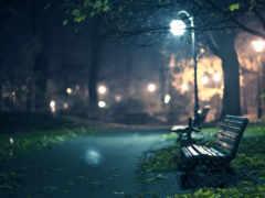 ночь, скамейка, ван