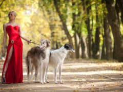 красном, девушка, платье Фон № 160155 разрешение 1920x1200