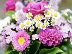 цветы, искусственный, graz