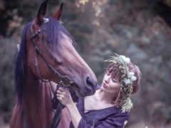 лошадь, девушка, лошади