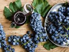 виноград, вино, вред
