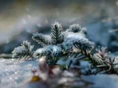 снег, winter, склон