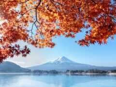 осень, лист, гора