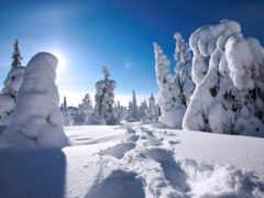 drift, winter, финляндия