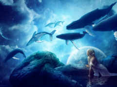 azul, кит, fantasy