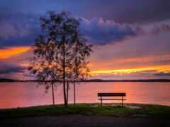 скамейка, озеро, junto
