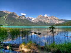 канада, fonds, emerald