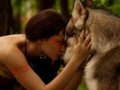волк, дружба, девушка