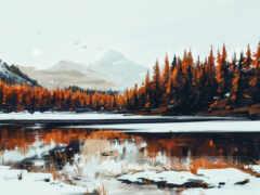лес, природа, winter
