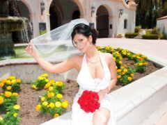 denise, платье, wed