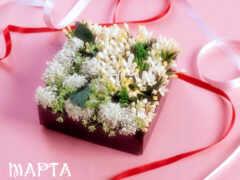 цветы, красивый, postcard