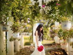 девушка, flowerpot, природа