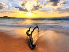 beach, sunset, landscape