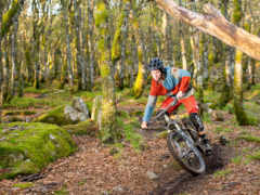 гора, карбон, bike