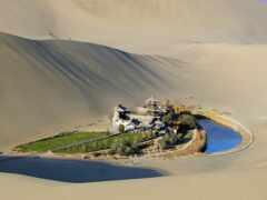 пустыня, гоби, оазис