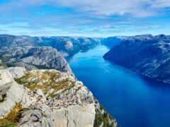norwegian, популяция, миро