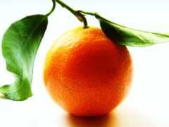 плод, required, оранжевый