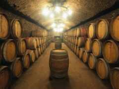 вина, склад, вино