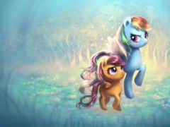 ponyville, крыло, радуга