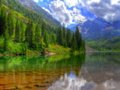 лес, горы, природа