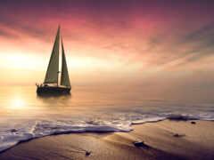 florida, sail, donald